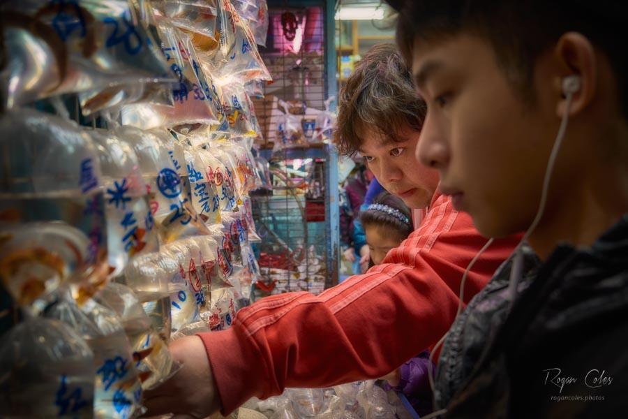 Shopping for Aquarium fish on Tung Choi Street, Mongkok, Hong Kong